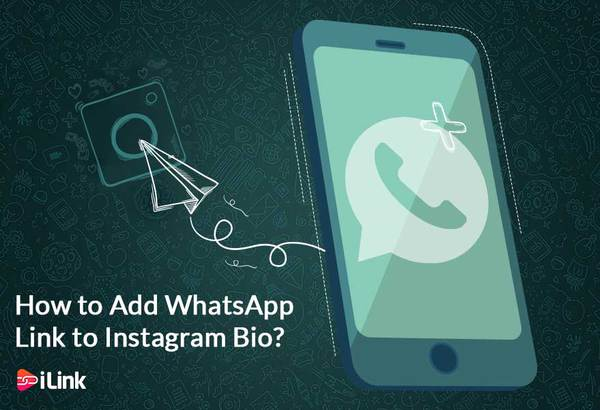 How to Add WhatsApp Link to Instagram Bio?